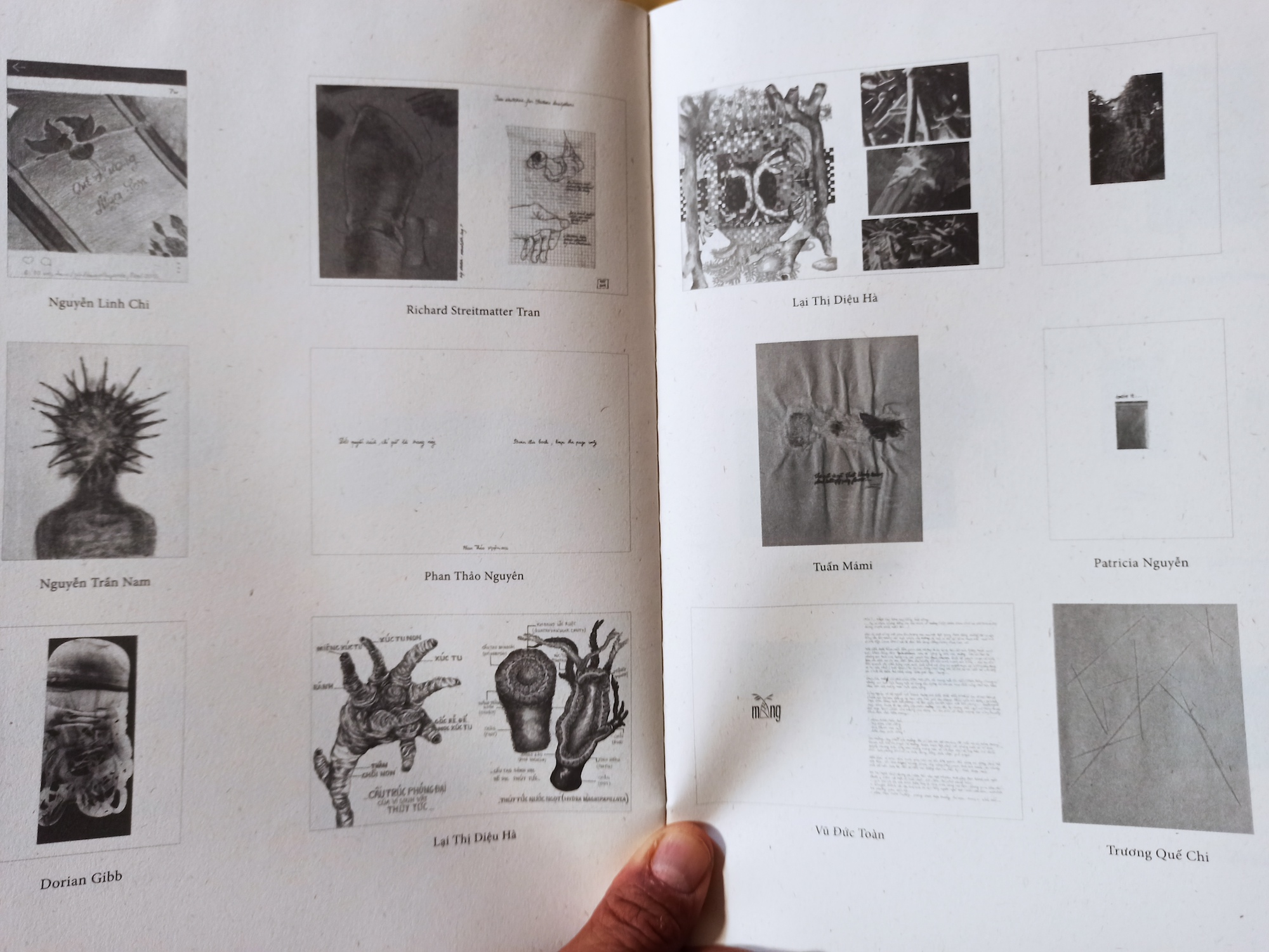 Contemporary Vietnamese Artists Book